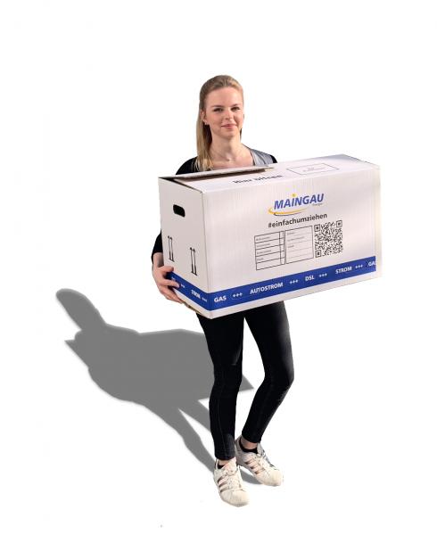 MAINGAU Energie Umzugskarton - 10 Stück
