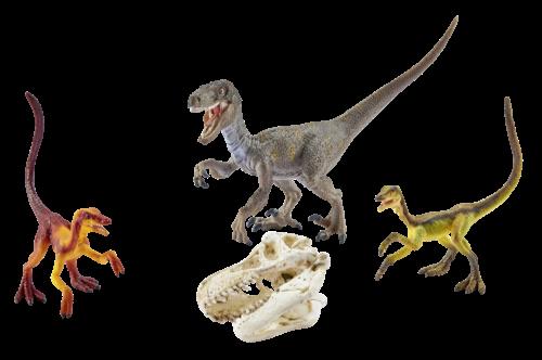 Schleich Dinosaurs 42259 Velociraptor auf der Jagd