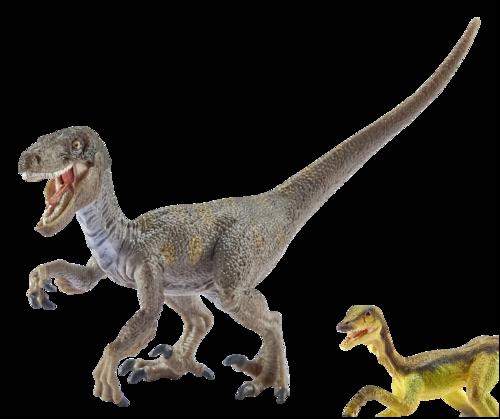 Velociraptor auf der Jagd Schleich Dinosaurs